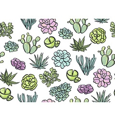 Succulents seamless pattern vector
