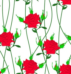 seamless background with flower roses vector image