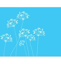 fennel flower blue vector image