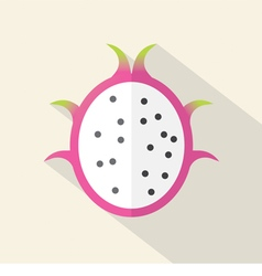 Dragon Fruit Part Flat Design vector image