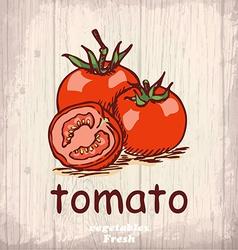 Fresh vegetables sketch background vintage hand vector