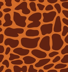 leather giraffe 4 vector image