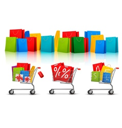 Background with shopping color bags and shopping vector