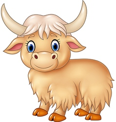 Cartoon cute yak isolated on white background vector