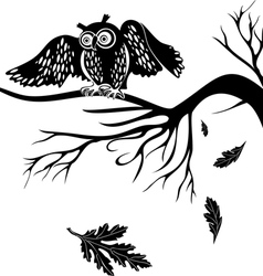 Owl on a tree branch vector