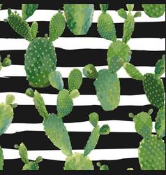 Cactus tropical summer botanical background vector