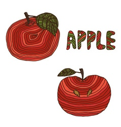 hand drawn apples vector image vector image