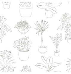 Houseplants set pattern vector image vector image