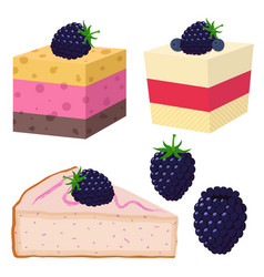 Slice of cake with blackberry desserts with vector