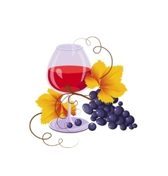 Glass of red wine and black grapes vector