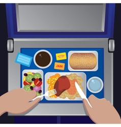 Dinner on the plane from first view vector