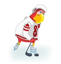 Funny parrot hockey vector