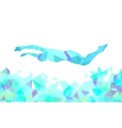 Butterfly Swimmer Color Silhouette Sport swimming vector image