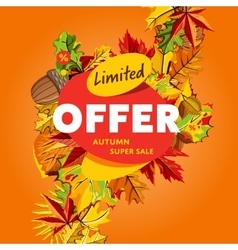 Limited offer banner autumn super sale vector