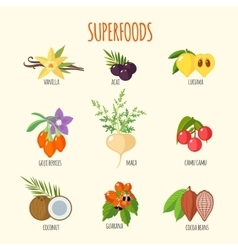 Set of superfoods in flat style vector