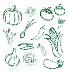 simple hand drawn doodle vegetables icons eps10 vector image
