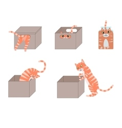 Set of cute cartoon cats in boxes vector
