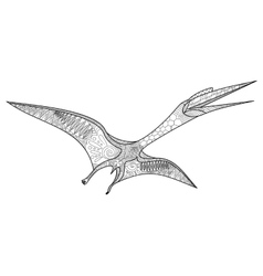 Pterosaur coloring book for adults vector