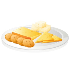 biscuits and cheese vector image