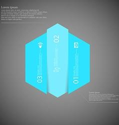 Hexagonal infographic template vertically divided vector