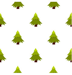 spruce pattern flat vector image vector image