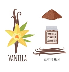 Superfood vanilla set in flat style vector