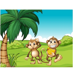 Happy monkeys at the hill with bananas vector image