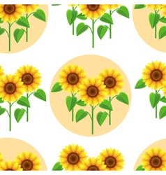 Seamless pattern with decorative flower sunflower vector image