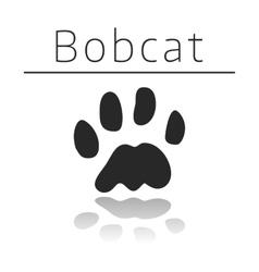 Bobcat animal track vector