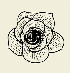 Rose flower sketch vector