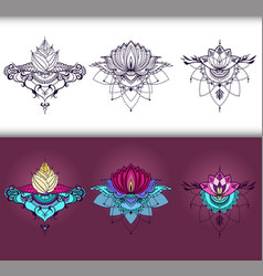 Freehand drawing of lotus flowers in east style vector