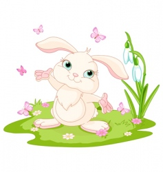 Easter bunny and butterflies vector image vector image