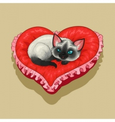 Kitty pillow vector