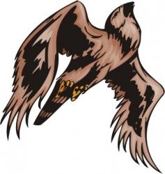 predatory birds vector image vector image