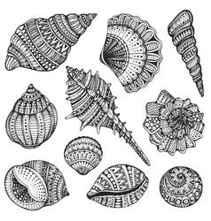 Set of hand drawn ornate seashells vector image vector image