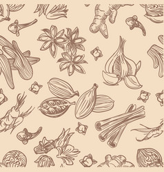 hand drawn spices seamless pattern vector image
