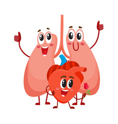 Funny smiling human lungs and heart characters vector