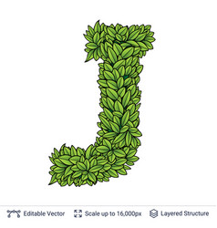 Letter j symbol of green leaves vector