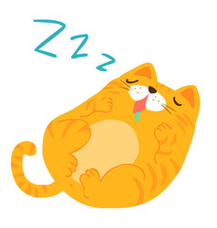 Fluffy sleeping sweet dream cat xa vector