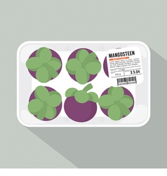 Mangosteen Pack vector image