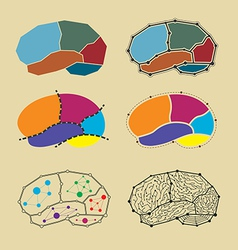 abstract brain symbol set vector image vector image