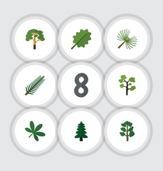 Flat icon ecology set of rosemary forest park vector