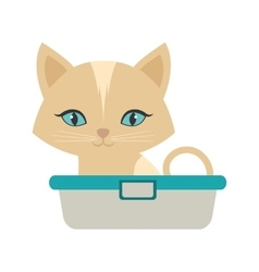 Small kitten sitting blue eyes bathtub vector
