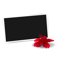 Photo frame and flower vector