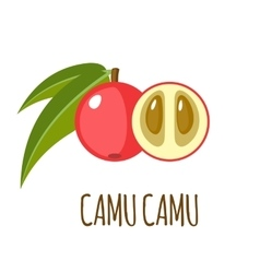 Camu camu icon in flat style on white background vector