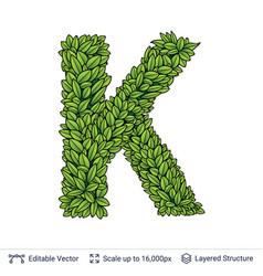 Letter k symbol of green leaves vector