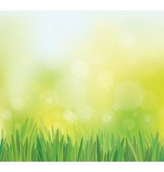 Sky grass vector