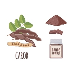 Superfood carob set in flat style vector image