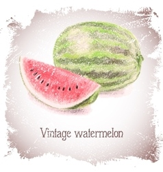 Vintage card with watermelon vector