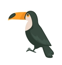 Funny Toucan isolated vector image